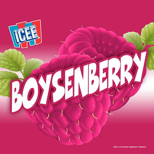 ICEE Flavor Boysenberry